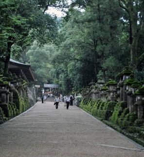 225_Nara_24
